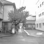 11/27(日)[新堀川〜] 賑町・雁道フィールドワーク