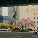 4/14(日)名古屋駅..まちの観察会